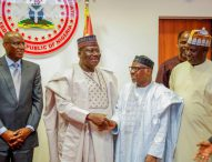 Lawan: Power Sector Privatisation Has Failed
