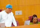 More Troubles For Sacked Lagos Commissioner As She Faces Assembly Probe