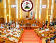 Insecurity: Senate Seeks Decentralisation Of Police Force